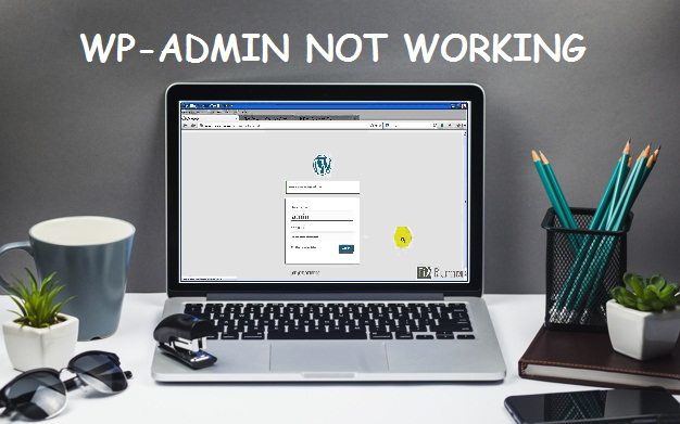 wp-admin not working